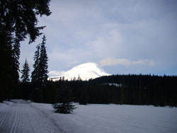 Trillium Tracks - Cross Country Ski Trail - Oregon Trail Barlow Road